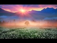 "Relaxing Music, Peaceful Music, Instrumental Music, ""Morning Meditation"" by Tim Janis - YouTube"