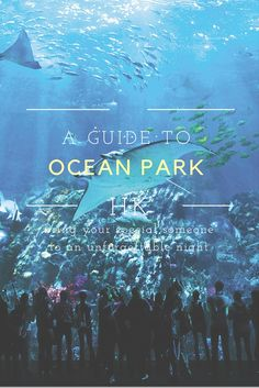A guide to exploring Ocean Park Hong Kong