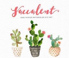 Acquerello succulenti clip arte Collezione /Digital clipart acquerello/matrimonio/mano file PNG verniciato/individuale