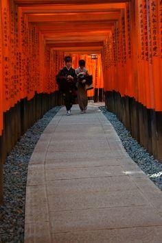 Senbon Torii -  Fushimi Inari Taisha, in Kyoto, Japan by Yayoi Takeda