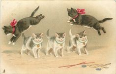 two black cats wearing red bows jump over three kittens standing in a line