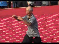 90 year old Hung Kuen Master Leung Daiyau performs the Snake guiding the crane - YouTube