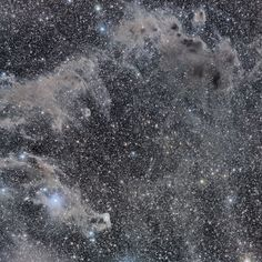 The Chameleon's Dark Nebulae. This starbirth region features dark nebulae that can be seen as the block light from the background stars. Blue reflection nebulae are dotted about, and silvery dust clouds that faintly reflect starlight add mystery. (Credit & Copyright: Andrey Kuznetsov)