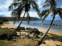 A Picture on Kauai  Read about Hawaiian Art & Culture