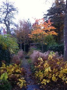 1000 images about levende tuinen on pinterest tuin met and van - Geplaveid voor allee tuin ...