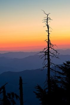 Beautiful colors and composition.sunset/sunrise photography is so much harder than you think. This photography did amazing //Day's End - Clingman's Dome, Great Smoky Mountains//Silhouette photography//Nature photography//Mountain photo// Beautiful Sunset, Beautiful Places, Beautiful Pictures, Landscape Photography, Nature Photography, Sunrise Photography, Photography Studios, Photography Backdrops, Silhouette Photography