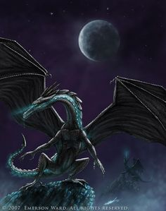 Starfire Dragon by Emerson Ward