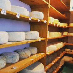 Cheese room at Belnori Boutique Cheesery Dairy, Cheese, Boutique, Room, Boutiques, Peace, Bedroom