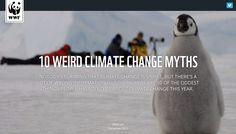10 weird climate change myths, WWF