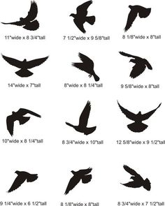 dove silhouette tattoo | Flying Dove Silhouette Pictures