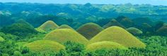 The birth and source of all #chocolate comes from the Chocolate Hills of #Bohol, #Philippines. Okay, just kidding. There not chocolate at all but during the dry season they look like massive chocolate kisses. There's over a thousand of them and quite a sight as probably the cutest damn hills in the world. — #Travel in Sagbayan, Bohol.