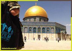 BFM in Jerusalem