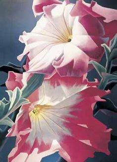 Ed Mell - Two Petunias - Larger oil painting Picture - oil paintings