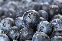 Blueberries that can reduce belly fat...