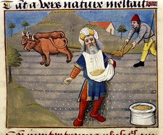 Farmer sowing. French 15th cent.bodl_Douce19