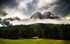 Gebirge mit Wald