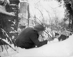 A British soldier shaking hands with a kitten in the snow, 1917