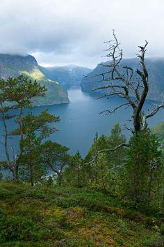 The Aurlandsfjord.