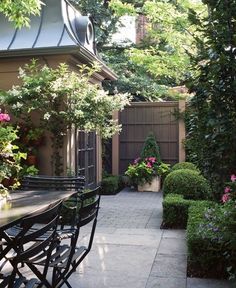 Lovely small backyard.