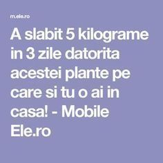A slabit 5 kilograme in 3 zile datorita acestei plante pe care si tu o ai in casa! - Mobile Ele.ro Herbal Remedies, Herbalism, Health Fitness, Keto, How To Plan, Film, Medicine, Diets, The Body