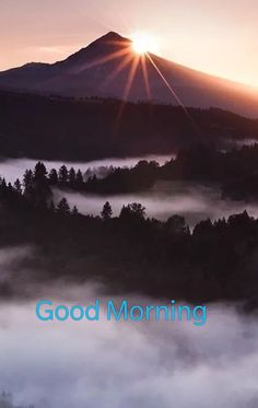 Good Morning Love ❤️ hope you rested well and that you will have a great day! Missing you ! Good Morning Flowers Gif, Good Morning Greetings, Good Morning Good Night, Morning Wish, Good Morning Images, Positive Morning Quotes, Morning Qoutes, Morning Board, Motivational