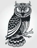 wise owl tattoo - Google Search