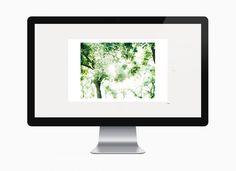 takahiro motonami web