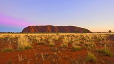 Take a look at these vast lands with a photo tour of the Australian Outback. Best Places To Travel, Places To See, Places Around The World, Around The Worlds, Ayers Rock, Cheap Flights, Travel Images, Travel Couple, Australia Travel