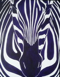Zebra 2016