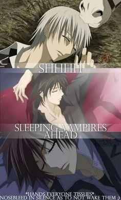 Ssshh don't wake them up - Zero, Kaname, Senri - Vampire Knight Vampire Knight Zero, Anime Naruto, Anime Guys, Hot Anime, Sasuke Uchiha, Zero Kiryu, Papi, Me Me Me Anime, Manga Art