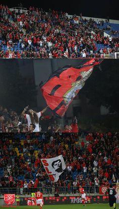 A Minha Chama: TdP 2016/2017 - 1ªE: 1º Dezembro 1 SL Benfica 2
