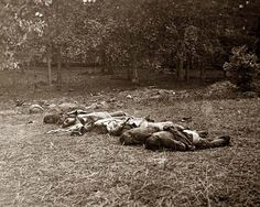 Gettysburg, Pennsylvania. Confederate dead, view at the edge of the Rose woods, July 5, 1863