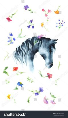 Watercolor hand drawing horse head with wild flowers on white. Hand painting wall art illustration.