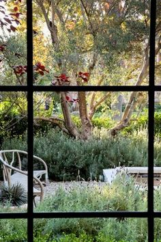 Don't forget the view from inside. Situate trees to line up with windows for best view.  William Hefner Architecture Interiors & Landscape  - Studio William Hefner
