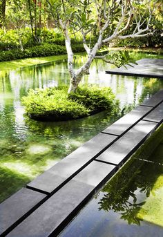 reflecting pool in the 'Sun House', by Guz Architects, Singapore