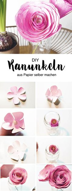 DIY Papierblumen: Schöne Ranunkeln ganz einfach selber machen Quick and easy to make beautiful DIY flowers from paper for your spring decoration, or as a gift for your loved ones. Paper Flowers Craft, How To Make Paper Flowers, Flowers For You, Paper Crafts For Kids, Giant Paper Flowers, Flower Crafts, Diy Flowers, Diy And Crafts, Paper Gifts