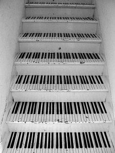 ZsaZsa Bellagio – Like No Other: black and white