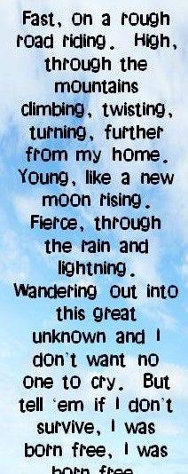 Amen Kid Rock Song Lyrics