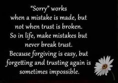Once trust is broken, there is NOTHING you can do to get it back the way it used to be....