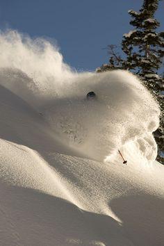 Photo of Craig DiPietro at Alta, Utah, by Lee Cohen