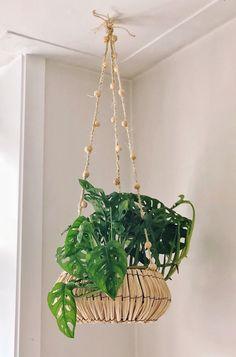 Sisal, Plant Hanger, Interior And Exterior, Planter Pots, Green, Diy, Inspiration, Euro, Trellis Design