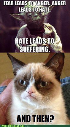 Yoda does not impress Grumpy cat