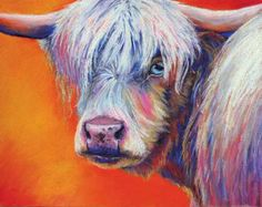 Peek-a-Boo - pastel Scottish Highlander cow painting - click to see larger image