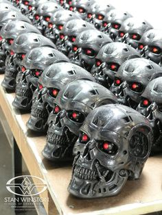 In The Future Skynet Duplicated Human tissue to the New T-12 Terminators