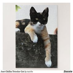 Just Chillin Tricolor Cat Jigsaw Puzzle Cat Pose, Make Your Own Puzzle, Custom Gift Boxes, High Quality Images, Your Design, Cat Lovers, Jigsaw Puzzles, Original Paintings, Kitten