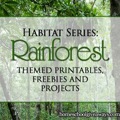 Habitat Series: Rainforest Themed Printables, Freebies and Projects | Homeschool Giveaways