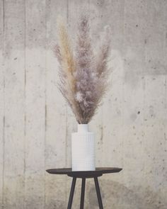 "Pretty Dried Pampas Grass in ""COOL GREY & GOLD CHAMPAGNE"" by Pampas Gal A mixture of Pampas is always a good way to change up your interior décor! 🌾 #pampasgrass #homedecor Living Room Decor, Bedroom Decor, Jena, Art Furniture, Out Of Style, Dried Flowers, Apartment Therapy, Vancouver, My House"
