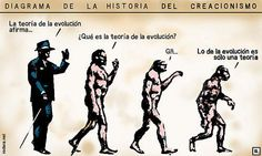 @.. DIAGRAMA DE LA HISTORIA DEL CREACIONISMO: La teoría de la evolución afirma... ¿Qué es la teoría de la evolución?. Gñ...  Lo de la evolución es sólo una teoría.