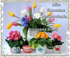 Kartka Miłe Słoneczne Pozdrowienia...:) | E-kartki.net.pl Glass Vase, Film, Disney, Good Morning, Movie, Film Stock, Cinema, Films, Disney Art