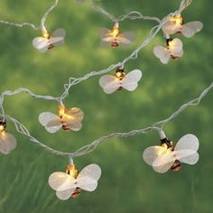 Illuminate your garden or porch with this whimsical string of honeybee lights. Each set includes 10 plastic bees with shimmery translucent wings. Ready to hang indoors or out. 8 ½' cord. This product
